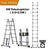 Rendio 5M Alu Teleskopleiter Klappleiter Ausziehleiter Mehrzweckleiter Anlegeleiter aus hochwertigem Alu Teleskop-Design 150 kg Belastbarkeit, 8X8 Spross