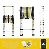 Finether Leiter Teleskopleiter 5M Aluleiter Anlegeleiter Mehrzweckleiter Alu max Belastbarkeit 150 kg