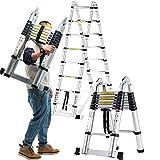 Teleskopleiter Multifunktionale Konstruktionsleiter Tragbare Teleskopleiter Faltbare Gelenkleiter für Loft, Power, Garten Indoor Outdoor (größe : 2.5m+2.5m=straight 5m)